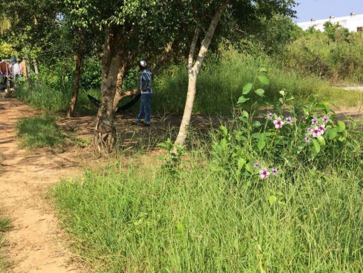 Đất vườn Hẻm Cao Thắng, Vĩnh Lợi, Rạch Giá, Kiên Giang, 14x15m
