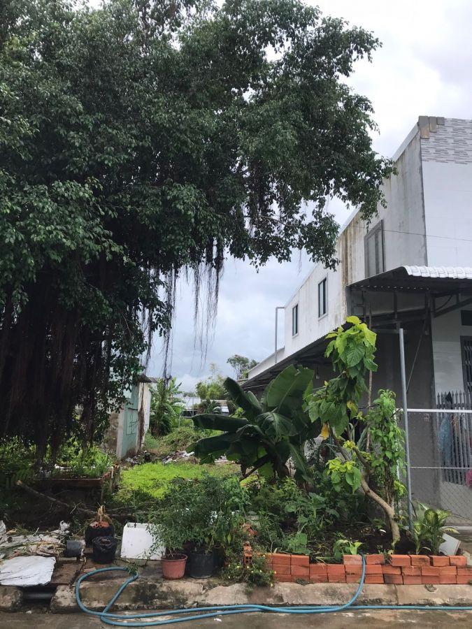 Cần bán gấp nhà đất và 3 phòng trọ tại KP Minh Phú, Minh Lương, Châu Thành, Kiên Giang