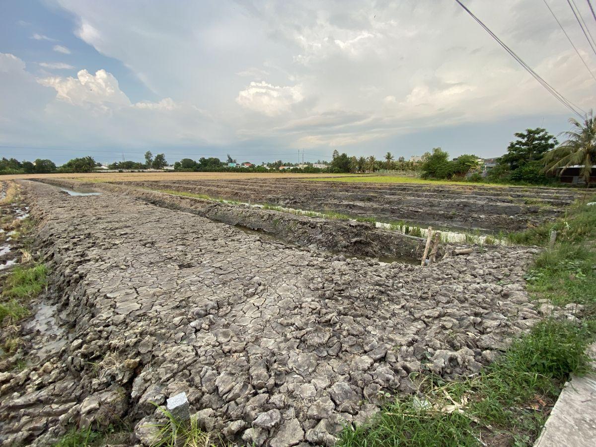Bán đất làm nhà vườn 1000m2 (9x113), Hồ Văn Huê, Vĩnh Quang, Rạch Giá, Kiên Giang